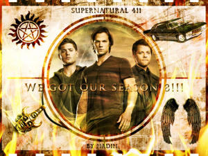 http://img182.imagevenue.com/loc147/th_453029546_Supernatural411_We_did_it1_Nadin_122_147lo.jpg