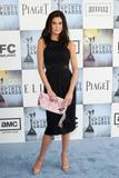 th_55139_Celebutopia-Teri_Hatcher_arrives_at_the_24th_Annual_Film_Independent3s_Spirit_Awards-05_122_531lo.jpg